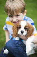 menino com animal de estimação rei charles spaniel filhote de cachorro foto