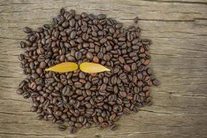 feijão de café em uma mesa de madeira e planta de café