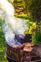 churrasco jardim processo cozinhar carne grelha