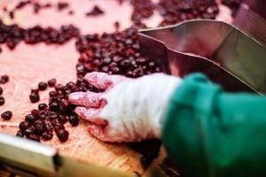 cerejas ácidas em máquinas de processamento