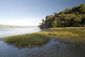 tomales bay, califórnia foto