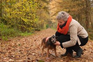 ager cuidando de seu animal de estimação