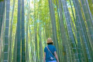 jovem explora nos bosques de bambu