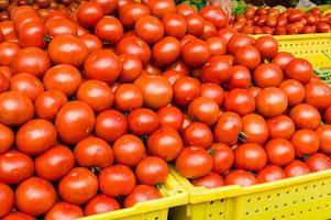 grande exibição de tomates vermelhos foto