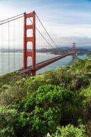 ponte golden gate em são francisco com árvores verdes de primeiro plano