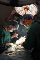 cirurgião veterinário trabalhando na sala de cirurgia com um assistente foto