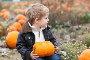 menino da criança no campo de abóbora foto