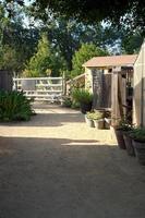 galpão de jardim plantas e madeiras