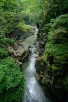 vale de agatsuma em gunma, japão foto