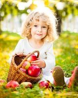 uma jovem garota com uma cesta de maçãs no parque foto