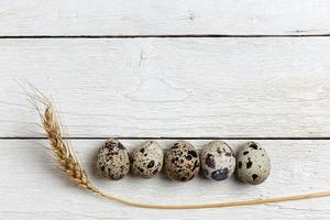 ovos de codorna foto