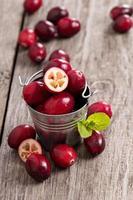 cranberries em um balde foto