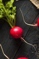 rabanetes crus orgânicos em um monte foto