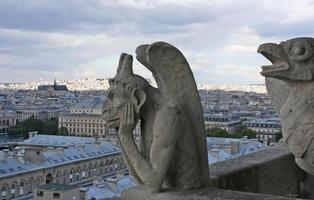 gárgula, catedral de notre dame em paris, frança.