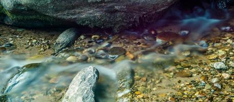 rio largo que flui através da floresta arborizada