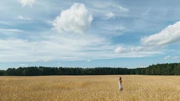 menina em um campo de trigo foto
