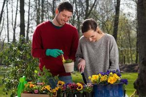 casal apreciando o trabalho do jardim