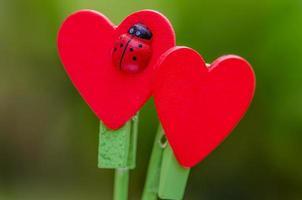 vara de madeira em forma de coração vermelho foto