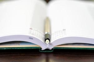 caneta-tinteiro e diário foto