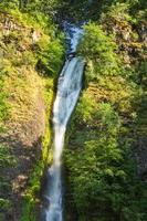 cachoeiras de cavalinha no desfiladeiro do rio columbia foto