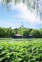 Beihai Park foto