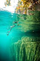 água potável foto