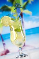 bebida alcoólica foto