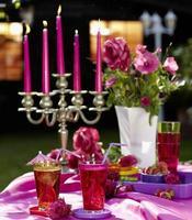 mesa de jardim com bebidas