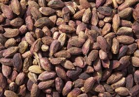 amendoins com casca de pistache com casca organiza como plano de fundo