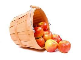 maçãs na cesta de um fazendeiro de madeira foto