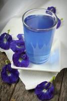 bebida de ervilha borboleta ou bluechai foto