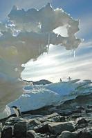 escultura em gelo, cabo denison, baía da comunidade, antártica