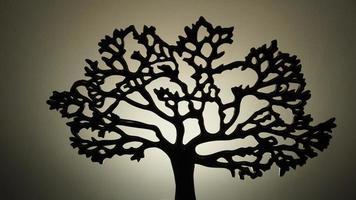 árvore 6 foto