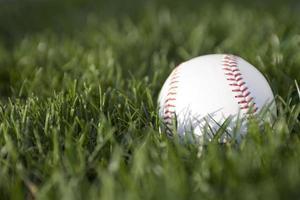 beisebol na grama com área de texto foto