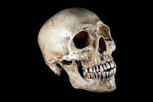 cabeça de esqueleto isolada foto