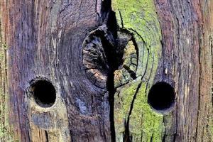 estrutura de madeira. foto