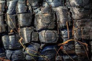 madeira queimada foto