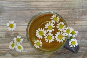 chá de camomila, flores de camomila com espaço de cópia foto