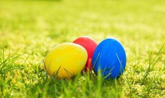 ovos de páscoa no prado verde