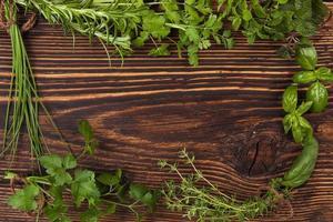 fundo de ervas culinárias com espaço de cópia. foto