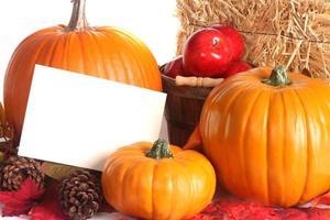 cena de colheita de outono com espaço de cópia foto