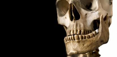 crânio humano foto