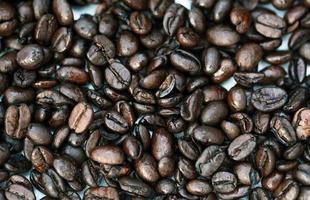 grãos de café de perto foto
