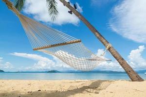maca de praia foto