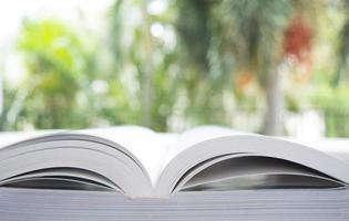 lendo um livro foto