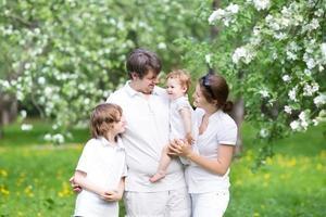 linda família jovem em um jardim de macieira florescendo