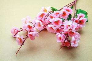modelo de flor de cerejeira foto