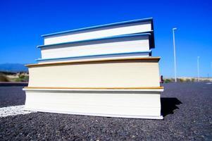 no conceito de literatura rodoviária