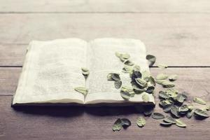 livro aberto com folhas na mesa de madeira