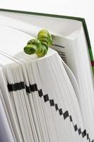 figura de verme verde no livro